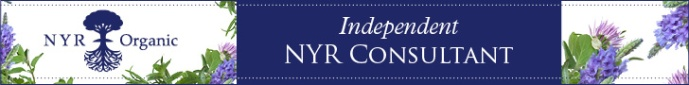 independent-consultant-long-logo