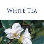POST8_white_tea